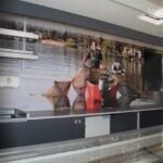 GAMO Fresh-Master 380 verkoopwagen koeltoonbank achterwand meubel